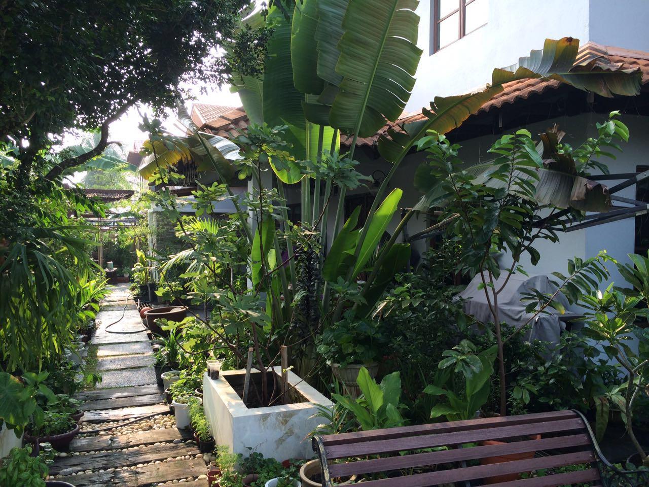 2 Storey Terrace Corner Link for Sale at SS3 Petaling Jaya (Move-In)